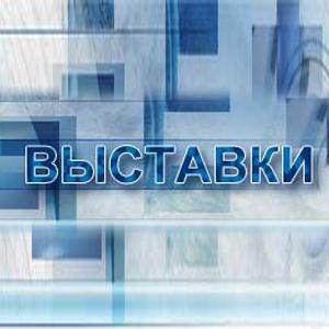 Выставки Новоорска